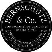 BT_logo bernschutz_Q11.cdr